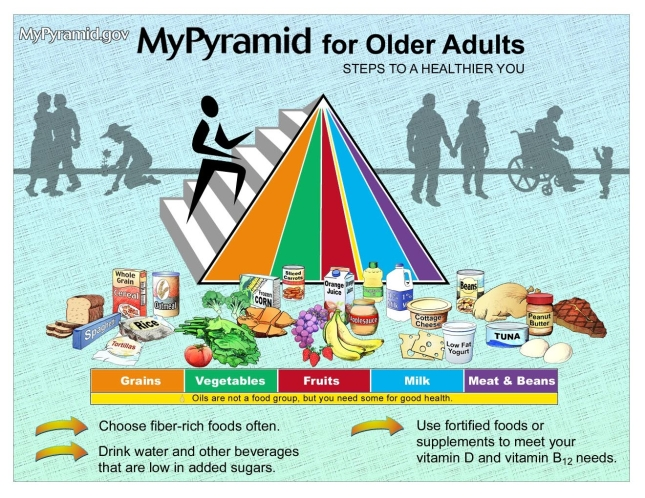 Interesting message Food pyramid for adult know, that